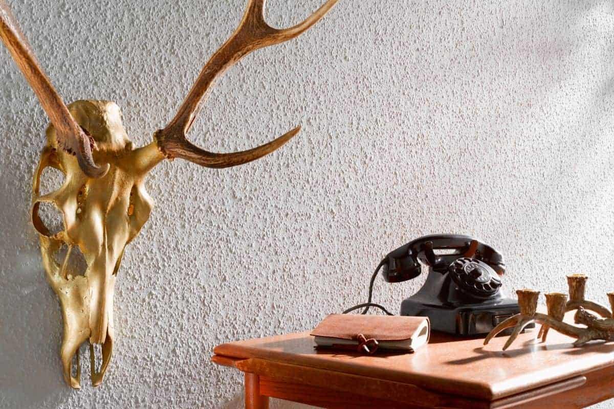 Geweih an der Wand neben Telefon