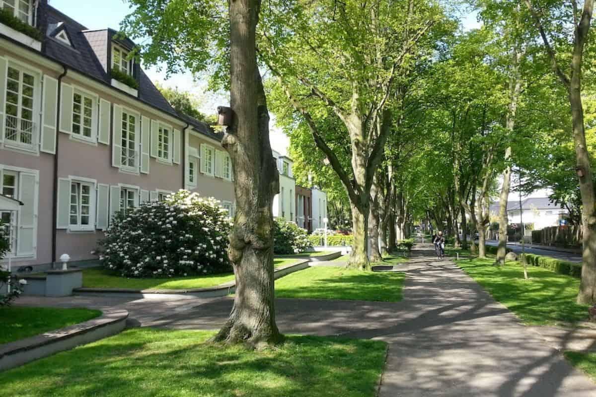 Vorgarten mit grüner Allee