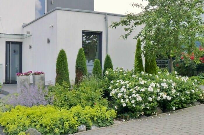 Bepflanzte Vorgärten sind gut fürs Stadtklima