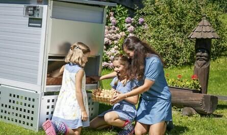 Hühnerhaus im eigenen Garten