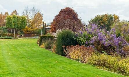 Gepflegter Rasen mit Beet