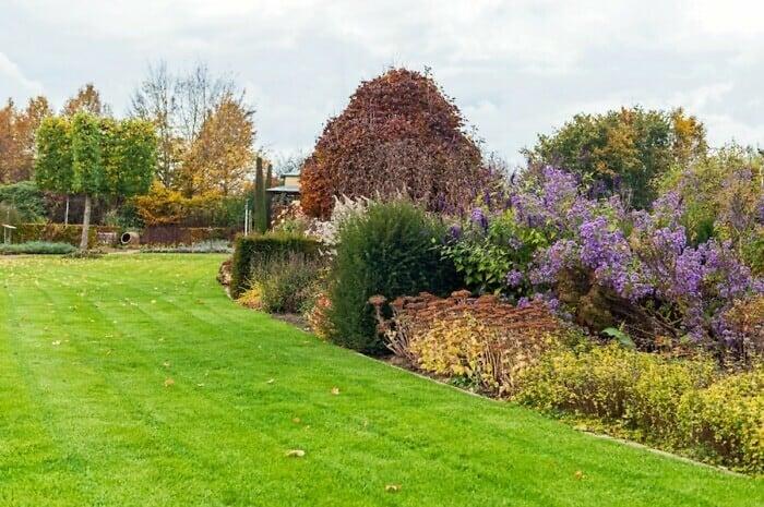 Pflege des Gartens im Herbst
