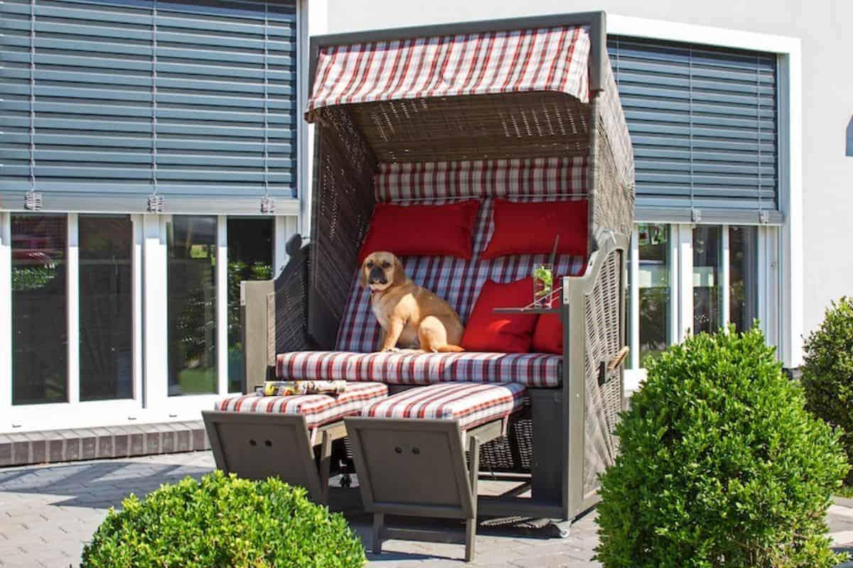 Strandkorb mit Hund auf Terrasse