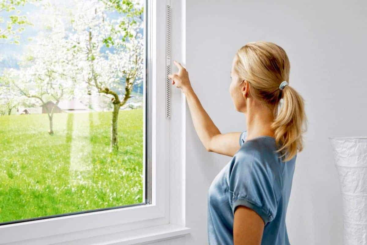Fenster mit Schutz vor Insekten und Pollen
