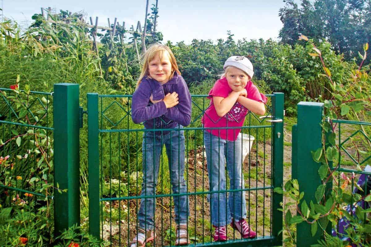 Kinder klettern auf Metallzaun