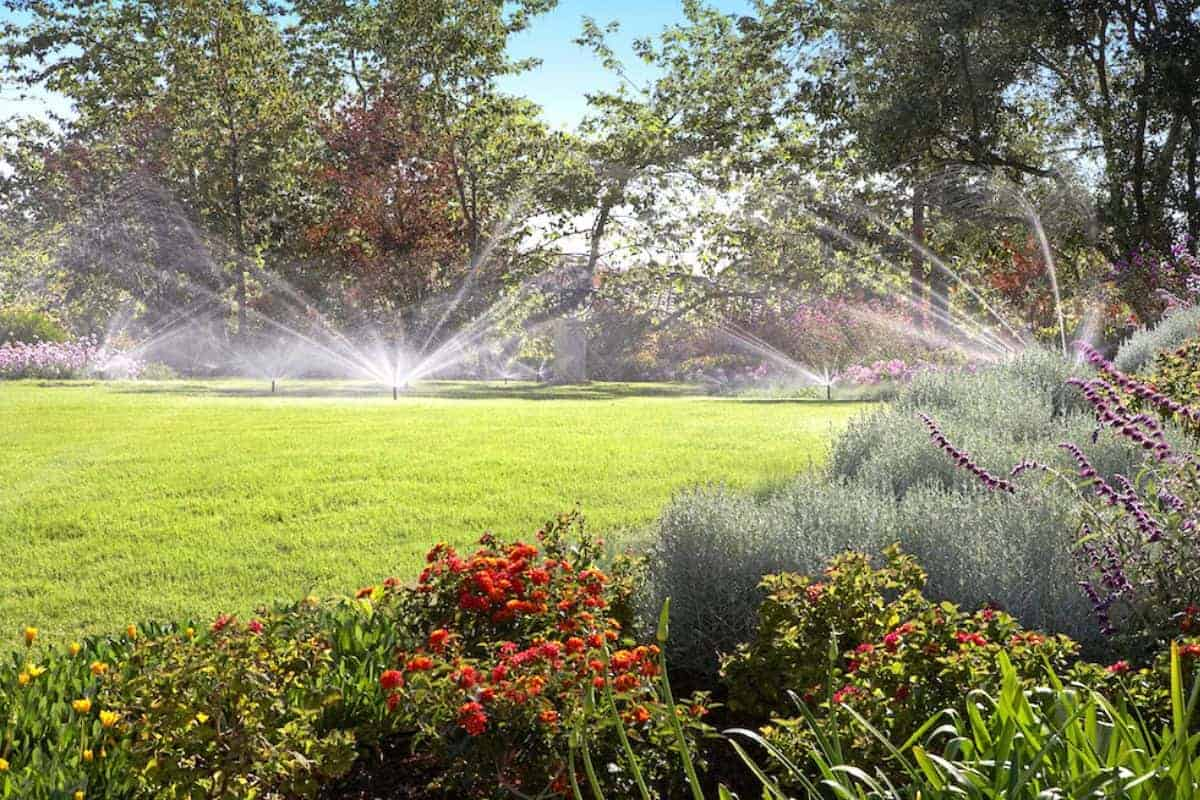 Automatische Bewässerung für Rasen