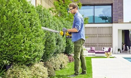 Mann mit Motor-Heckenschere bei der Gartenarbeit