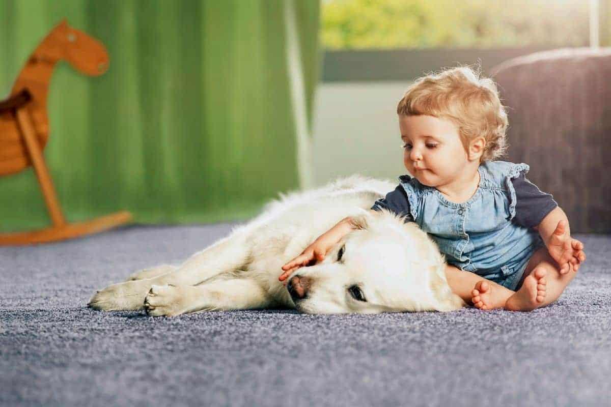 Kleinkind sitzt mit Hund auf Teppich
