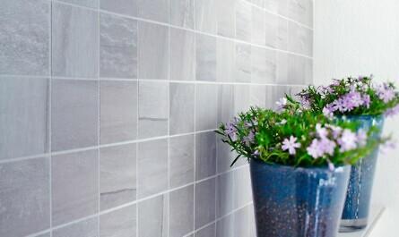 Pflanzen vor hellen Wandfliesen im Bad