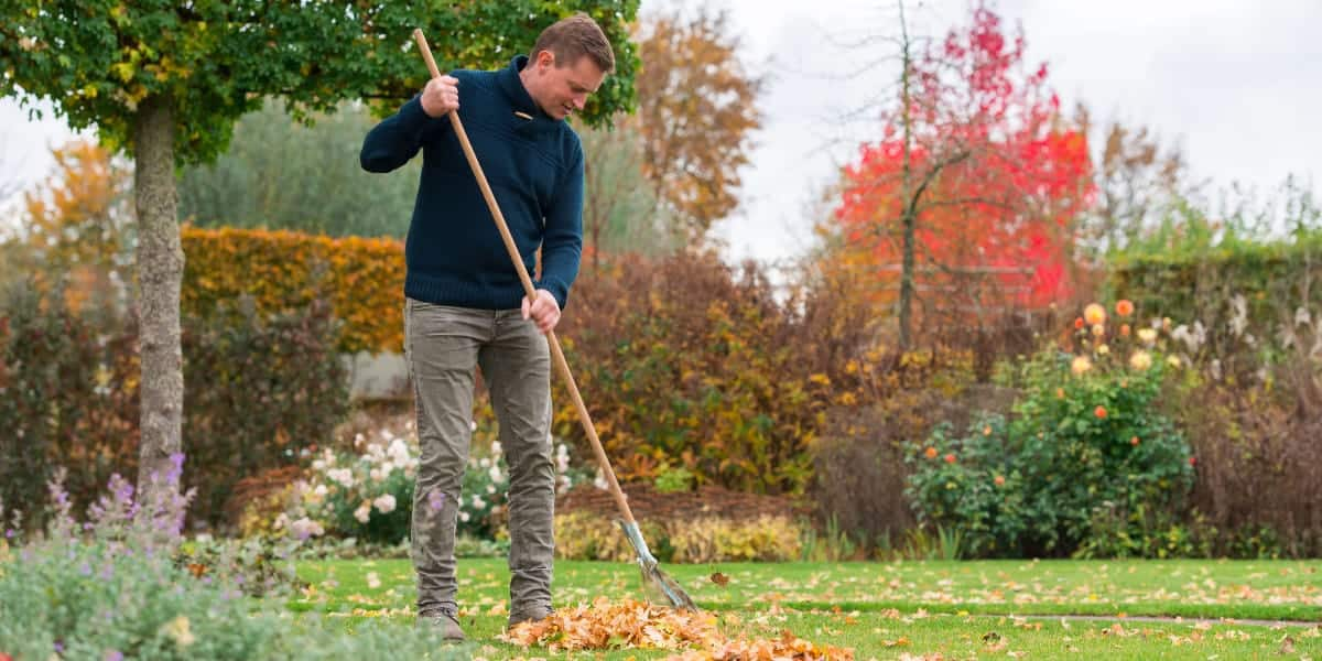 Mann harkt Laub im Herbst